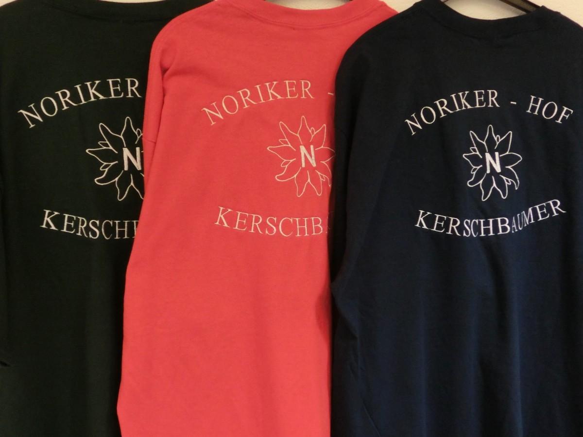 Noriker Hof2